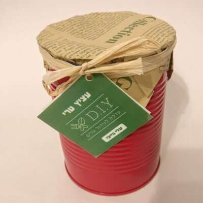 ערכה לגידול צמחים- מתנות לראש השנה, מתנות לטו בשבט, מתנות מקוריות